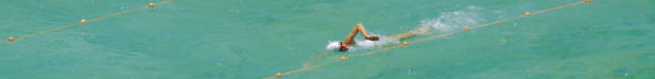 lond swimmer